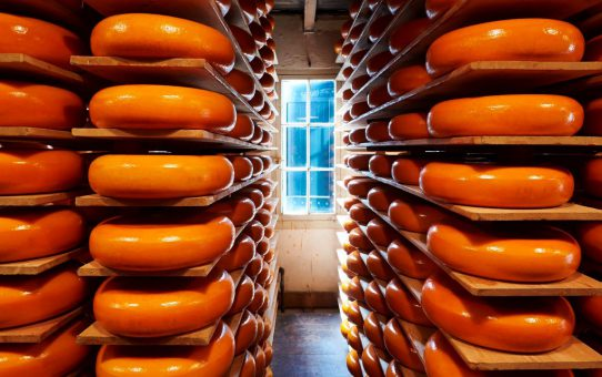 Groothandel kaas is het adres voor slimme inkopers